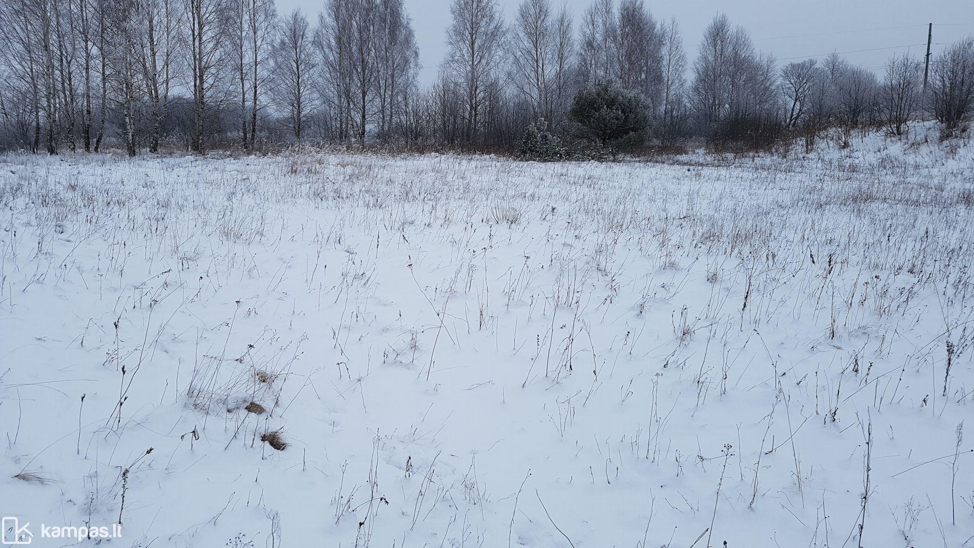photo No.25 Klaipėdos r. sav., Butkai